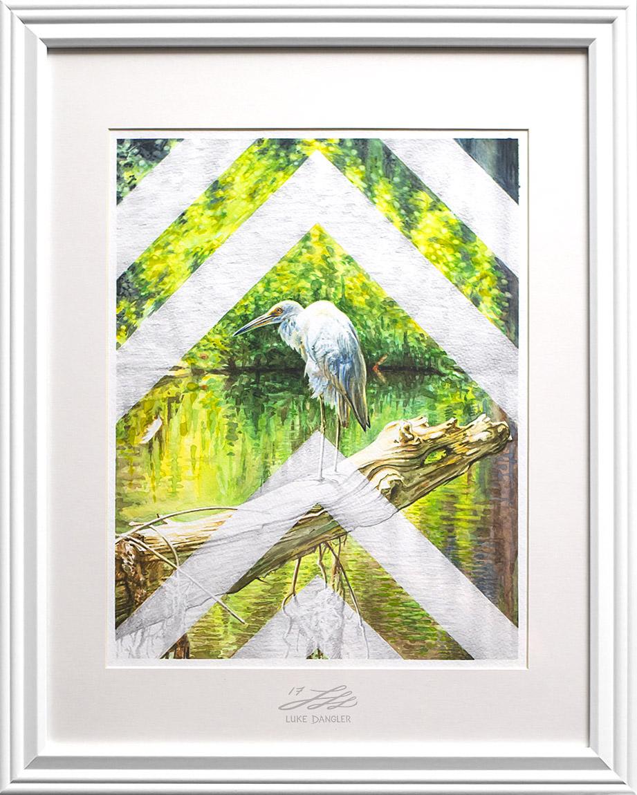 The Bird Framed