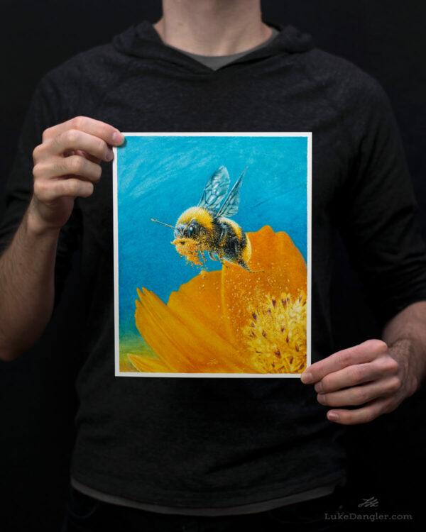 Beeard Print 8x10